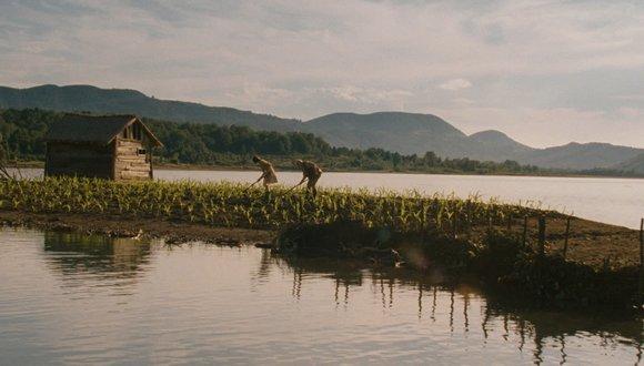 Kukuřičný ostrov